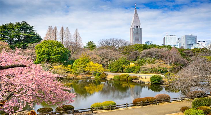 日本新宿御苑旅游景点介绍