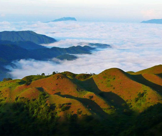 岑溪吉太天龙顶旅游景点风景
