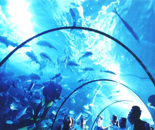 东湖海洋世界旅游景点风景